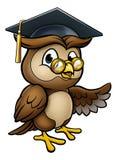 Mądry sowy kreskówki absolwenta nauczyciela Wskazywać ilustracja wektor