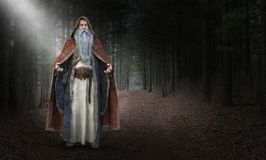 Mądry Zły czarownik, czarnoksiężnik, magia royalty ilustracja