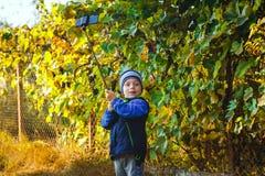 Mądrze szczęśliwa chłopiec bierze selfie Fotografia Royalty Free