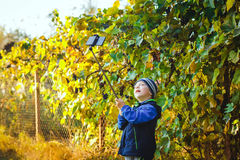 Mądrze szczęśliwa chłopiec bierze selfie Obraz Royalty Free