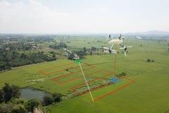 Mądrze uprawia ziemię pojęcie, trutnia use technologia w rolnictwo dowcipie Zdjęcie Royalty Free