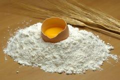 mąka jajeczna Fotografia Stock