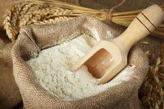 Mąka w torbie obraz stock