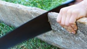Mężczyźni piłują kawałek drewno z ręczny stary żelaznym zobaczyli zakończenie w górę widoku zbiory wideo