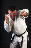 Mężczyzna ćwiczy Brazylijskiego jiu-jitsu (BJJ) Zdjęcie Royalty Free