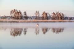 Mężczyzna łapania ryba na łodzi Fotografia Royalty Free