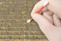 Mężczyzna bierze pył próbkę Obraz Royalty Free