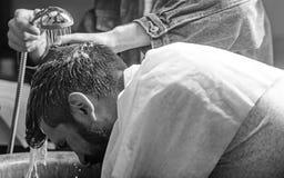 Mężczyzna brodaty klient modnisia zakład fryzjerski Mężczyzna z brodą i wąsy z ręcznikiem na ramionach, samiec ręki z prysznic da zdjęcie royalty free