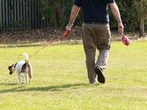 Mężczyzna chodzi jego zwierzę domowe psa Obrazy Royalty Free