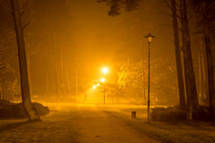 Mężczyzna chodzi samotnie przy nocą w podmiejskim parku Zdjęcia Royalty Free