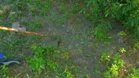 Mężczyzna chodzi z gazonu kosiarzem i kosi trawy przy pogodnym letnim dniem zbiory