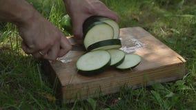 Mężczyzna cięć zucchini ostrożnie zakończenie up zbiory