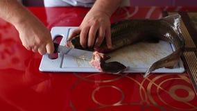 Mężczyzna Ciie Daleko żebra ryba zbiory wideo