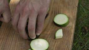 Mężczyzna ciie zucchini ostrożnie zbiory