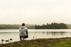 Mężczyzna dopatrywanie przy jeziorem dwa rzek algonquin parka narodowego dopatrywanie nurkuje Ontario Kanada na popielatej ranek  zdjęcia royalty free