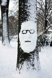 mężczyzna drzewo Obrazy Royalty Free