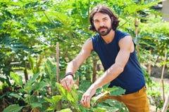 Mężczyzna działanie jako rolnik Fotografia Stock