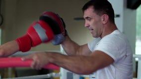 Mężczyzna gacenia od kickboxing uderzeń zdjęcie wideo