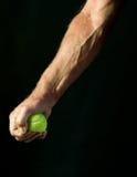 Mężczyzna gniesie tenisową piłkę Fotografia Royalty Free