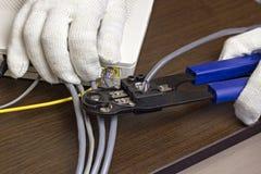 Mężczyzna gniesie układ scalonego na sieć kablu, modem internet, zakończenie obraz stock