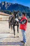 Mężczyzna i czarny koń obrazy royalty free