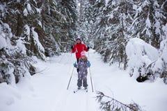 Mężczyzna i dziecka narta w zimie w lesie zdjęcie royalty free