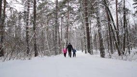 Mężczyzna i dziecko chwyta bieg w zima lasu zwolnionym tempie i ręki zdjęcie wideo