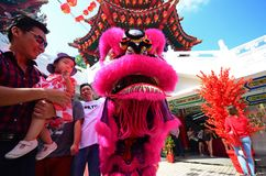 Mężczyzna i dziecko przy lwa tancerzem podczas Chińskiego nowego roku Zdjęcia Stock