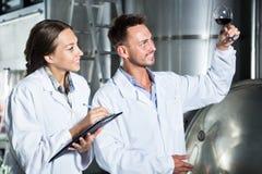 Mężczyzna i kobiety pracownicy na wytwórnii win manufactory Obraz Stock