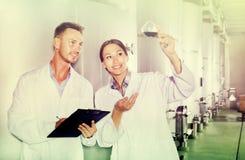 Mężczyzna i kobiety pracownicy na wytwórnii win manufactory Zdjęcia Royalty Free