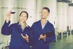 Mężczyzna i kobiety pracownicy na wytwórnii win manufactory Obraz Royalty Free