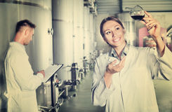 Mężczyzna i kobiety pracownicy na wytwórnii win manufactory Fotografia Royalty Free