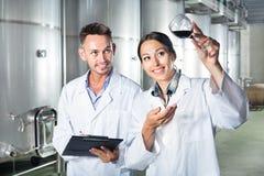 Mężczyzna i kobiety pracownicy na wytwórnii win manufactory Zdjęcie Royalty Free