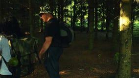 Mężczyzna i kobiety turyści z plecakami iść przez lasu na słonecznym dniu Strzał od strony zbiory