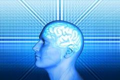 Mężczyzna i mózg Zdjęcia Royalty Free