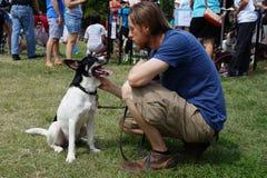 Mężczyzna i pies przy parkiem Fotografia Stock