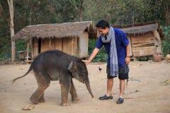 Mężczyzna i słoń Obraz Royalty Free