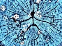 Mężczyzna ikona na drzewnym fiszorku Obraz Stock