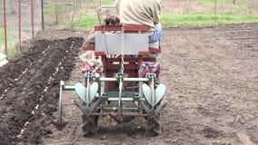 Mężczyzna Jadą Traktor Obsiewanie grula 4K UltraHD, UHD zbiory