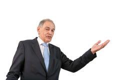 Mężczyzna jako urzędnik, przedstawiciel, adwokat lub odprzedawca, Obraz Royalty Free