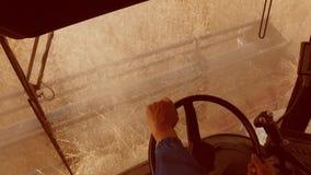 Mężczyzna jeżdżenia średniorolny syndykat zbiera na polu z pszenicznym widokiem od stylu życia syndykata salonu widok od pierwszy zdjęcie wideo