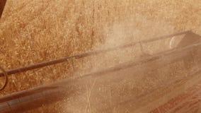 Mężczyzna jeżdżenia średniorolny syndykat zbiera na stylu życia pole z pszenicznym widokiem od syndykata salonu widoku od pierwsz zbiory wideo