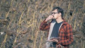 Mężczyzna je słonecznikowych ziarna na polu z wysuszonymi uprawami globalne ocieplenie pojęcia zbiory wideo