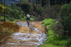 Mężczyzna jedzie bicykl na wiejskiej mokrej drodze gruntowej otaczał mój drzewa i dom - Napier, Zachodni przylądek, Południowa Af obrazy royalty free