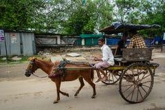 Mężczyzna jedzie końską furę w Agra, India Obrazy Stock