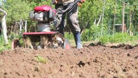 Mężczyzna jest rolnikiem w podmiejskim terenie, jarzynowy ogród, pługi ziemia z kultywatorem, manuału silnika pług, rzuca glinę i zbiory
