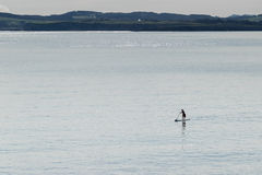 Mężczyzna kipieli ćwiczy paddel Zdjęcie Royalty Free