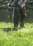 Mężczyzna kośby zieleni dzikiej trawy pole używać szczotkarskiego krajacza kosiarza lub władzy narzędzia sznurka gazonu drobiażdż Fotografia Royalty Free