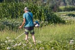 Mężczyzna kosi trawy podczas gdy pracujący w ogródzie na letnim dniu bez ochronnej odzieży zdjęcia stock