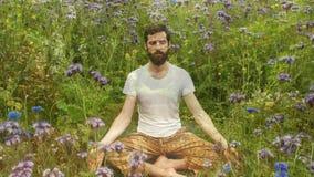 Mężczyzna Medytuje w ogródzie zbiory